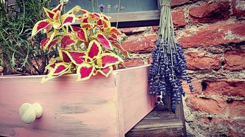 Šuplík jako květináč