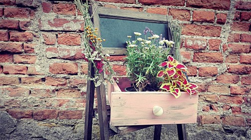 Starý šuplík jako provence květináč